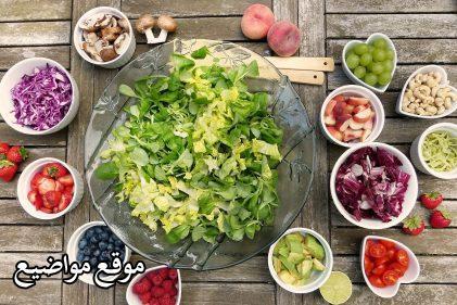 افضل نظام غذائي لانقاص الوزن بسرعة