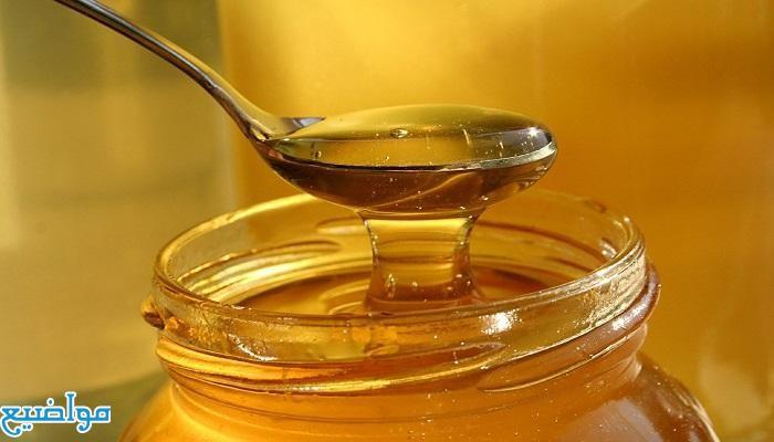 أسعار عسل النحل الطبيعي في مصر 2021