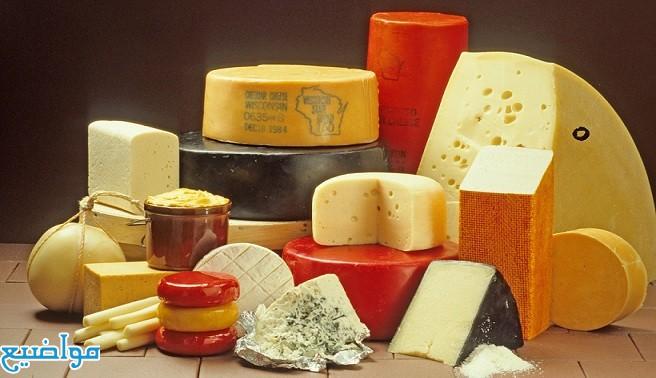 اسعار الجبن فى مصر اليوم