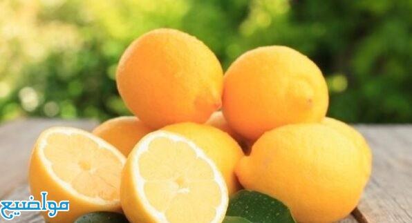 تفسير الليمون في المنام تفسير رؤية الليمون في الحلم