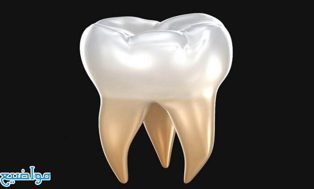 تفسير حلم رؤية الاسنان في المنام