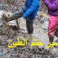 تفسير حلم رؤية الطين