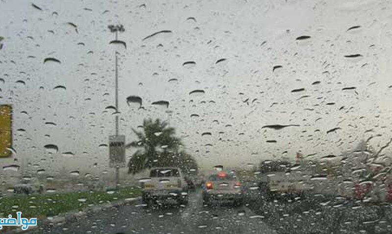 تفسير حلم رؤية المطر في الحلم لابن سيرين
