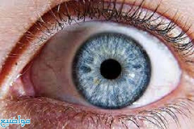 ماهي أعراض العين والحسد والسحر بالتفصيل