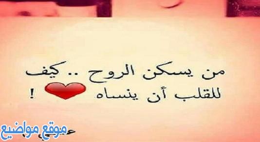 كلام جميل عن الحب والعشق والغرام