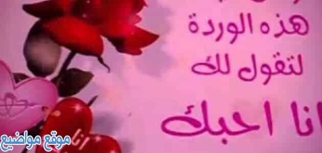 كلام حب لحبيبتي مصري قصير للحبيبة