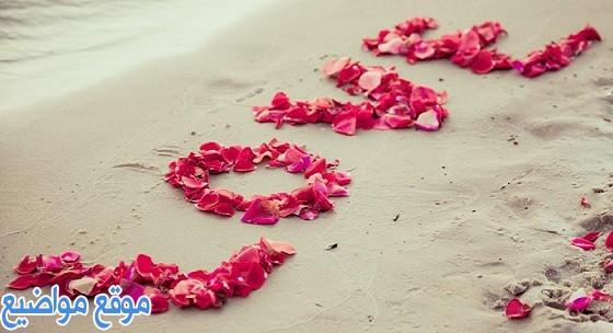 كلام عن الحب الحقيقي الصادق قصير
