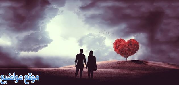 كلام يدخل القلب والعقل للحبيب
