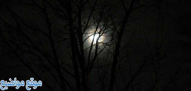 أقوال عن الليل والسهر والقمر قصيرة