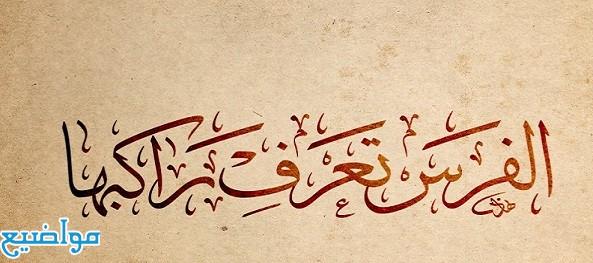 أمثال شعبية اماراتية قديمة ومعناها