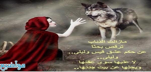 أمثال شعبية وحكم عن الذئب