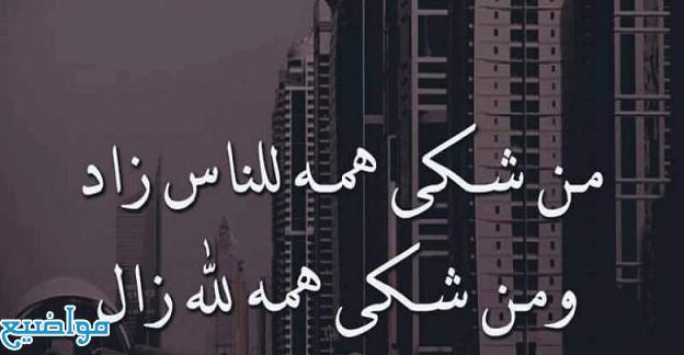 أمثال وحكم عربية قديمة مشهورة
