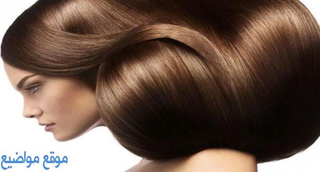 خلطات لتكثيف الشعر وتطويلة وتنعيمة مضمونة