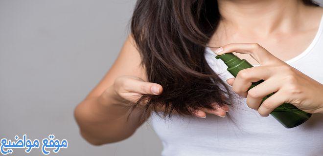 طريقة استخدام بديل الزيت للشعر