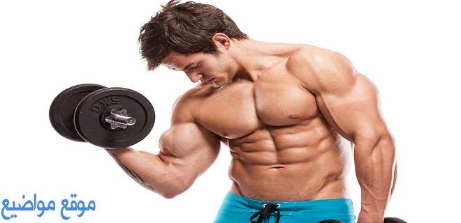 فوائد السيريلاك لكمال الاجسام والعضلات
