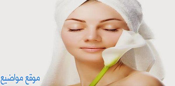 فوائد النشا للبشرة الدهنية الحساسة ووصفات النشا