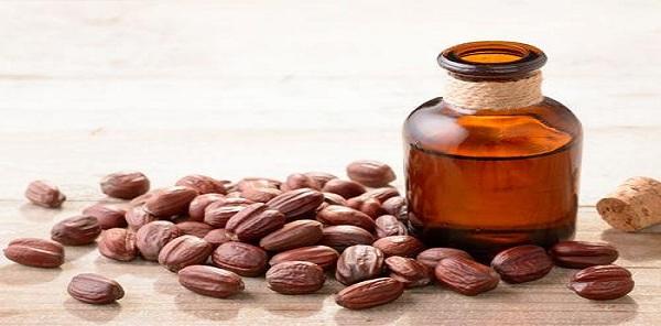 فوائد زيت جوجوبا للبشرة الدهنية والجافة الحساسة