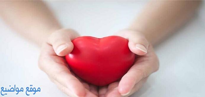 كلمات كلام في الحب للحبيب قصيرة
