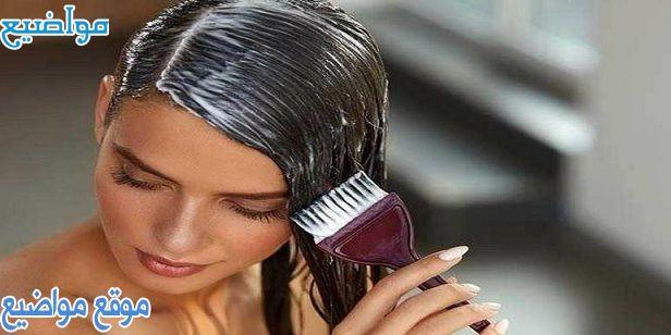 أفضل شامبو طبي للقشرة وتساقط الشعر للرجال والنساء