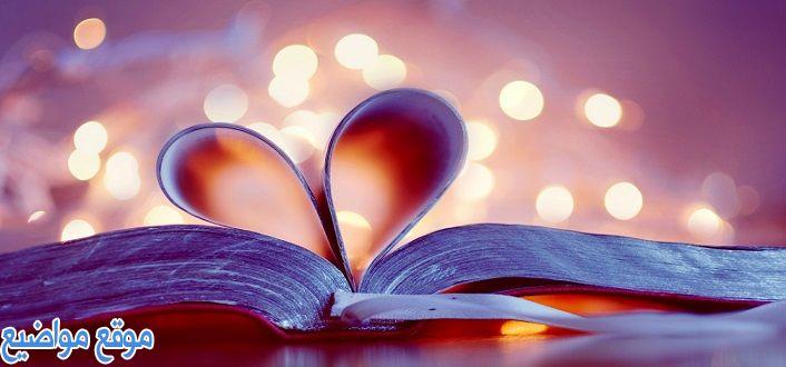 أقوال وحكم عن الصداقة والحب قصيرة وقوية