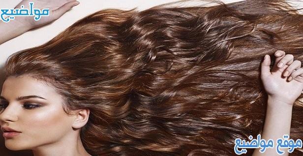خلطات لتكثيف الشعر الخفيف 6 خلطات مجربة