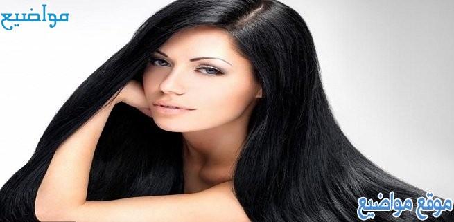 زيوت طبيعية للمعان الشعر ووصفات لمعات الشعر