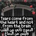 عبارات حزينة بالانجليزي مترجمة وكلمات حزينة بالانجليزي