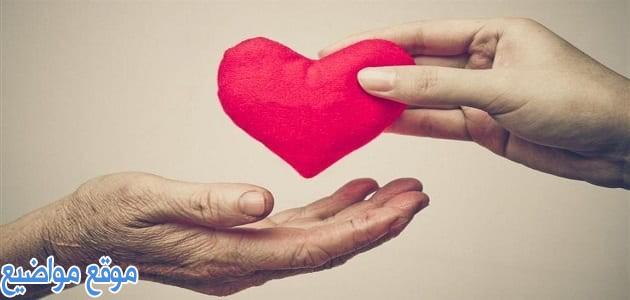 عبارات وكلمات عن المحبة بين الناس