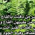 قصيدة مدح النبي محمد أجمل شعر في مدح الرسول