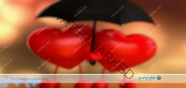 كلام حب قوي قصير وطويل للحبيب والحبيبة