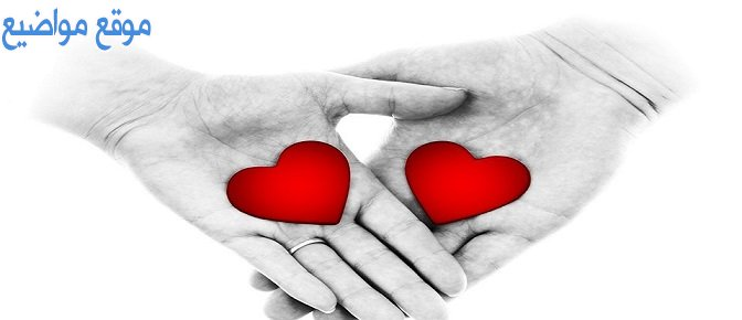 حالات واتس حب للزوج والزوجة وحالات حب قوية للواتس