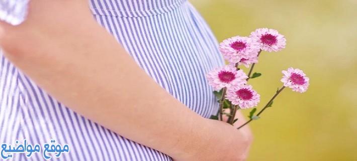 كلمات عن الأم قصيرة وعبارات عن الأم للواتس اب قصيرة