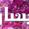 معنى اسم بيسان في القران ومعنى اسم بيسان وشخصيتها
