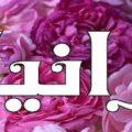 معنى اسم رانيا في القرآن والمنام معنى اسم رانيا وشخصيتها