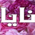 معنى اسم نايا في القرآن والإسلام معنى اسم نايا وشخصيتها