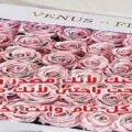 رسائل رومانسية لعيد الحب احلى رسائل في عيد الحب